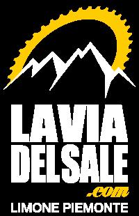 logo-laviadelsale